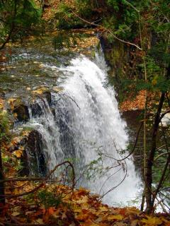 Hoggs Falls (Beaver Valley)