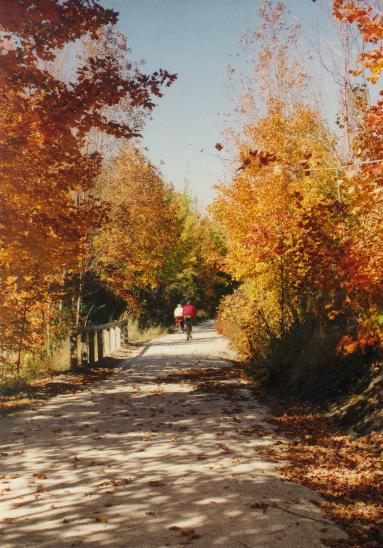Fall colours on the Georgian Trail
