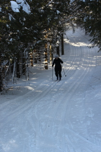 X-country skiing 3