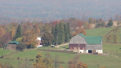 A Meaford farm in autumn