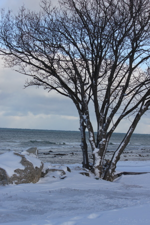 Georgian Bay in winter