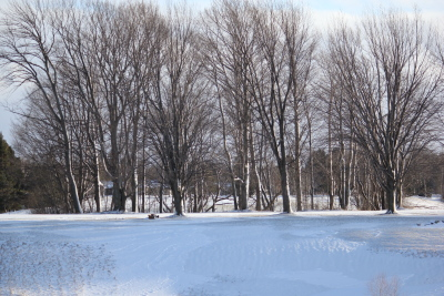 Meaford Golf Club in winter