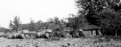 Nine tanks in orchard in Tank Range
