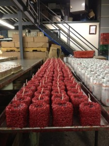 Meaford Candle Factory
