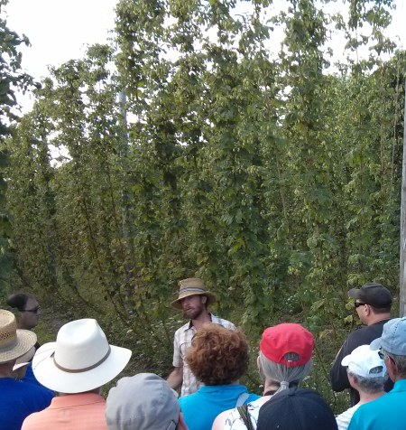 Nicholas Schaut explains the magic of hops at the Bighead Hops ShinDig.